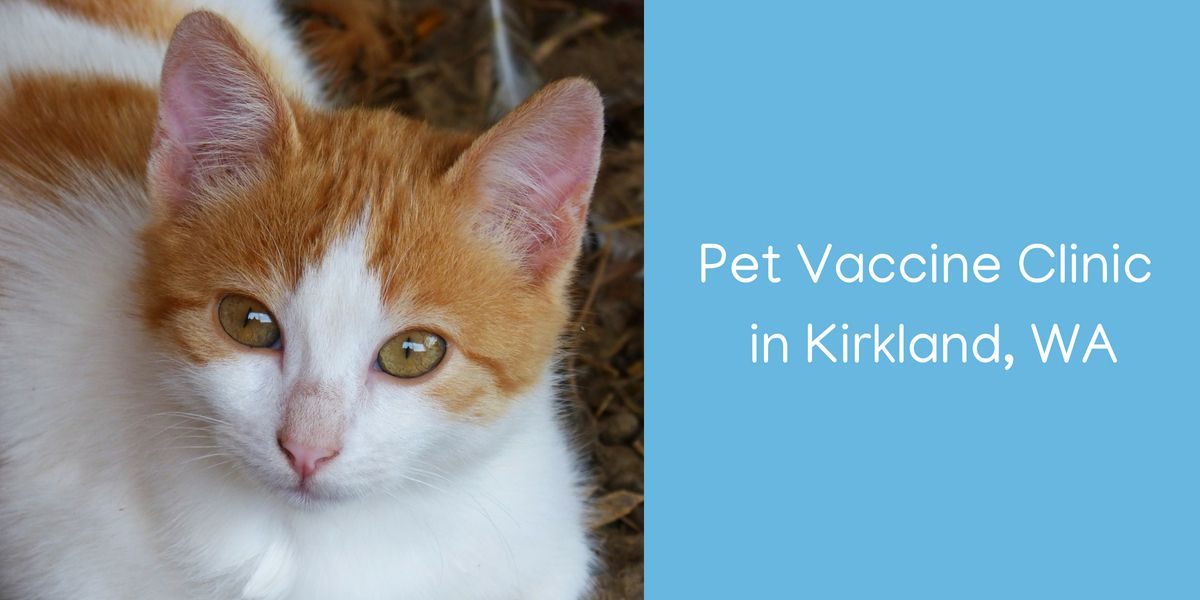Pet Vaccine Clinic in Kirkland, WA